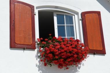 ¿Por qué es tan importante la ventilación natural?